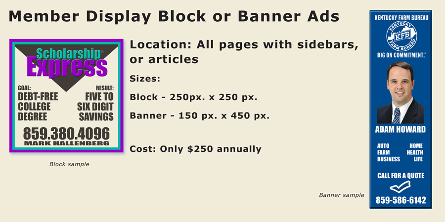 display-block-ads-4